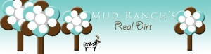 RealDirt-Winter